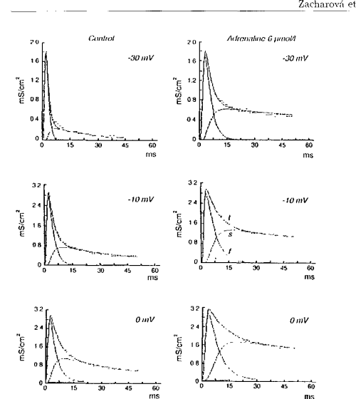 small resolution of figure 11 the effect of adrenaline on calcium conductances g a in ms cm2