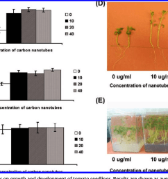 effect of cnts on growth and development of tomato seedlings results are [ 1164 x 788 Pixel ]