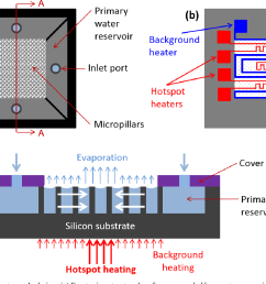 figure 1 schematic of test sample design a front microstructured surface surrounded [ 1354 x 994 Pixel ]