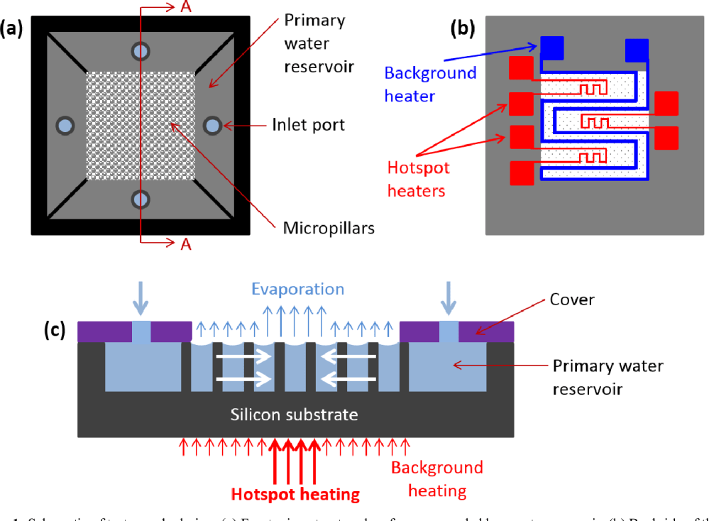medium resolution of figure 1 schematic of test sample design a front microstructured surface surrounded