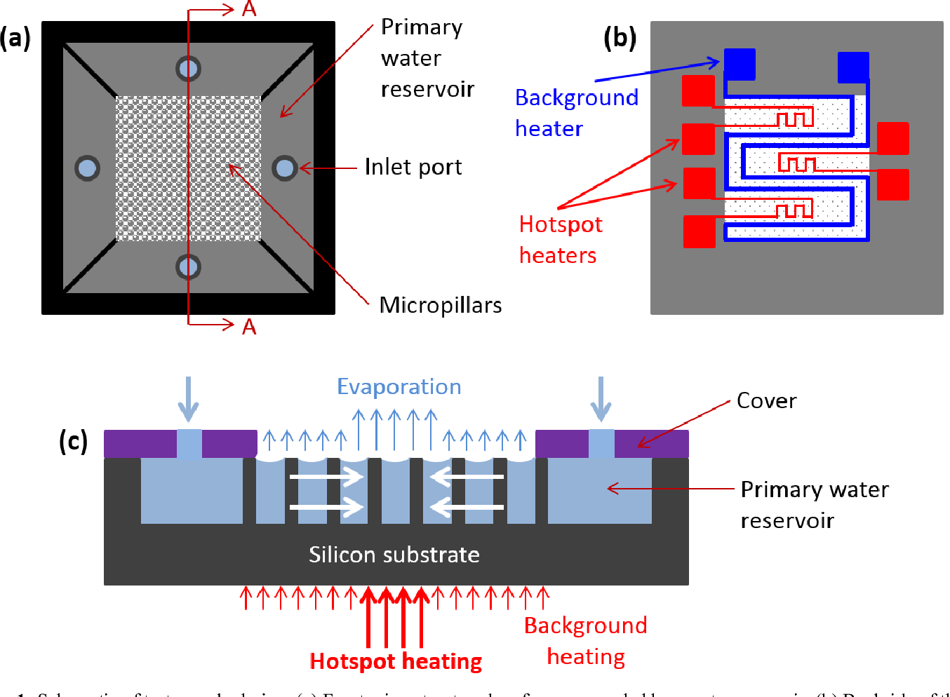 hight resolution of figure 1 schematic of test sample design a front microstructured surface surrounded