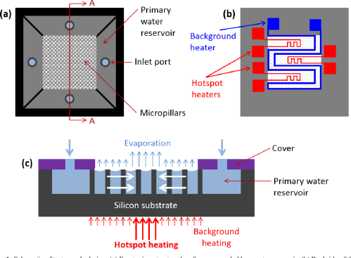 small resolution of figure 1 schematic of test sample design a front microstructured surface surrounded