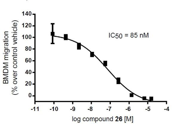 Discovery of a Selective Phosphoinositide-3-Kinase (PI3K