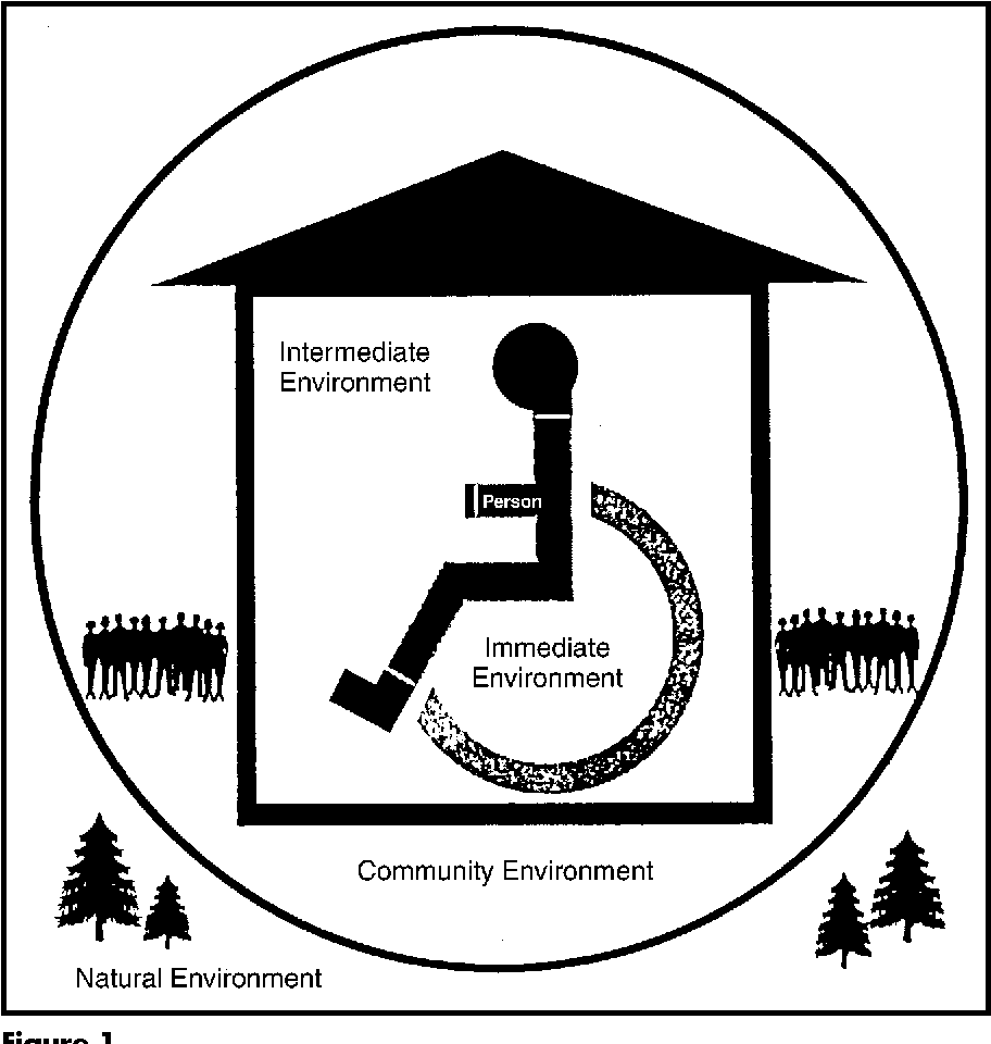 medium resolution of figure 1 the person and sectors of the environment the diagram relates the person