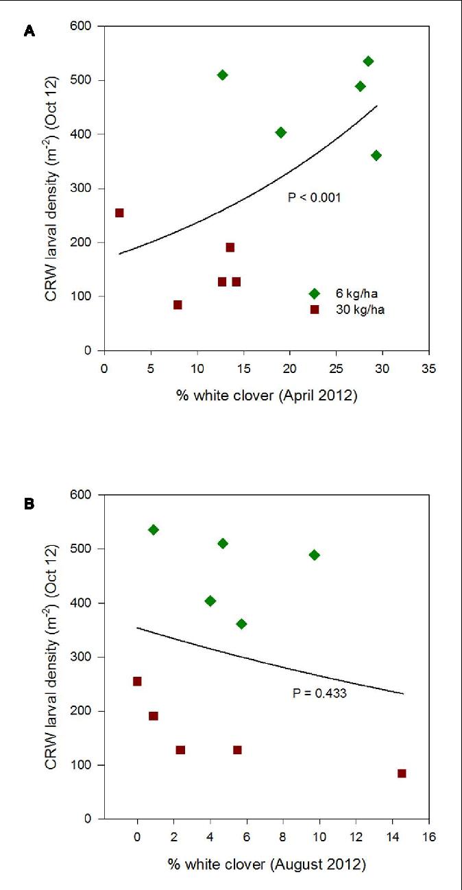 medium resolution of figure 3 clover root weevil larval densities measured in october 2012 in relation to
