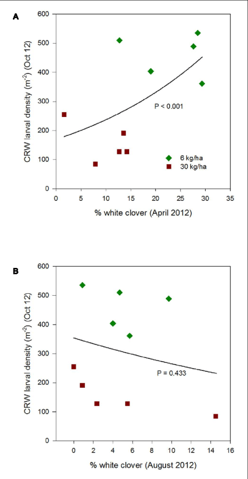 small resolution of figure 3 clover root weevil larval densities measured in october 2012 in relation to