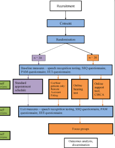 Figure flow chart of project items in blue apply to all enrolled cochlear implant also from cullington helen and kitterick padraig  debold rh semanticscholar