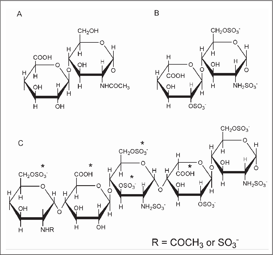 Figure 1 from Heparin and LMWH 809 Biochemistry and