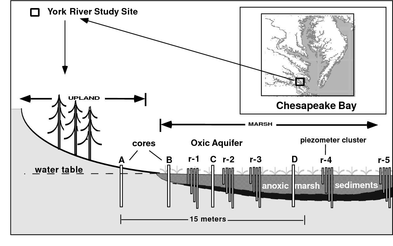 hight resolution of fig 1 site location and cross section letters a to d denote location