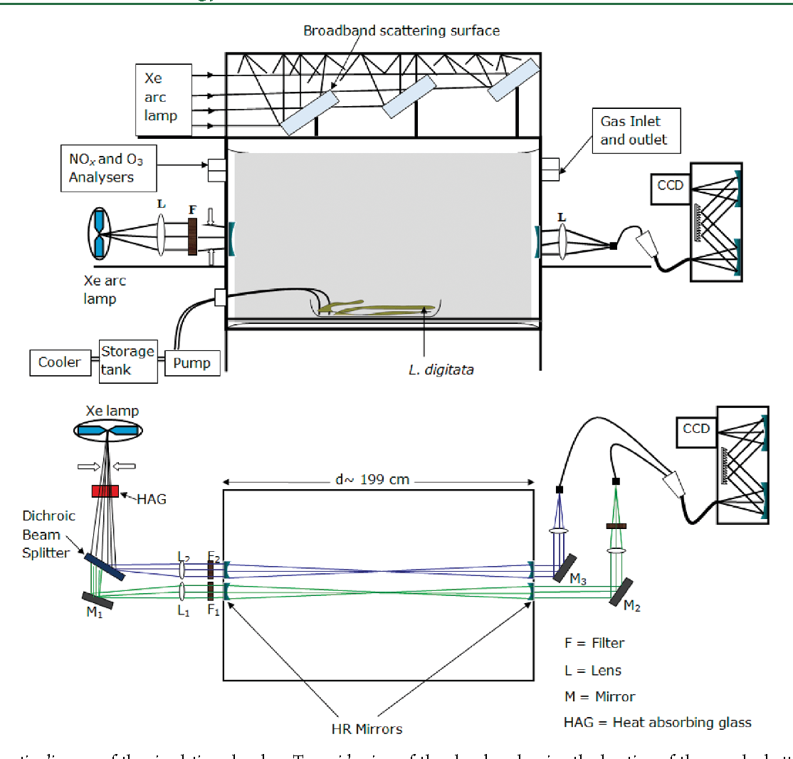 hight resolution of schematic diagram of the simulation chamber top side view of the