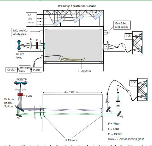 small resolution of schematic diagram of the simulation chamber top side view of the