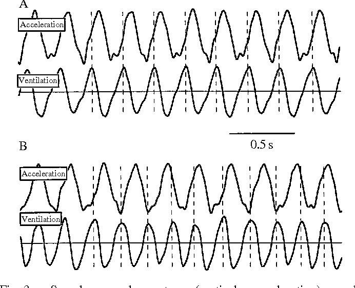 Figure 3 from Function of the intercostal muscles in