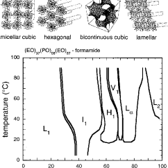 Propylene Phase Diagram Starfish Reproductive System Figure 1 From Structural Polymorphism Of Poly Ethylene Oxide The Concentration Temperature Eo 37