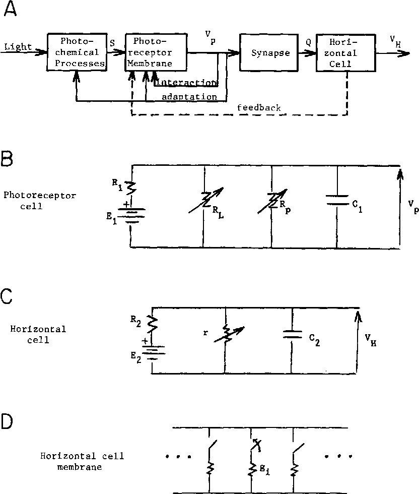 medium resolution of a block diagram of subsystems for the light horizontal
