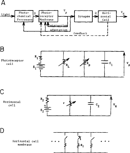 small resolution of a block diagram of subsystems for the light horizontal
