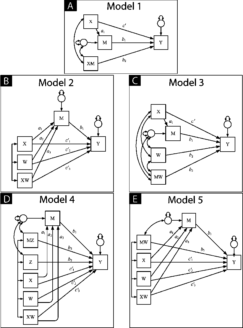 Figure 2 from Addressing Moderated Mediation Hypotheses