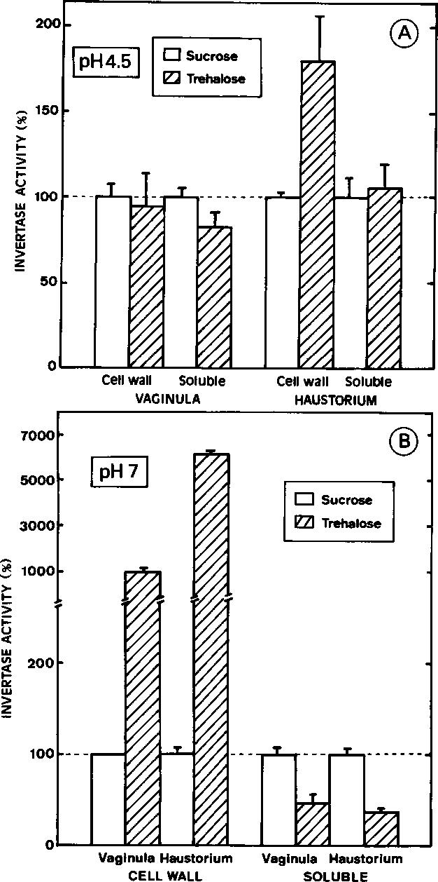 medium resolution of figure 3