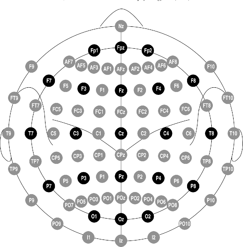 Figure 1 from The five percent electrode system for high