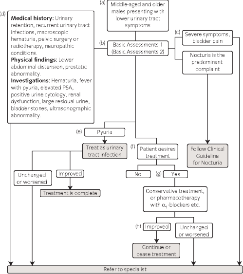 small resolution of 1 algorithm formanagement of lower urinary tract symptoms inmales a this
