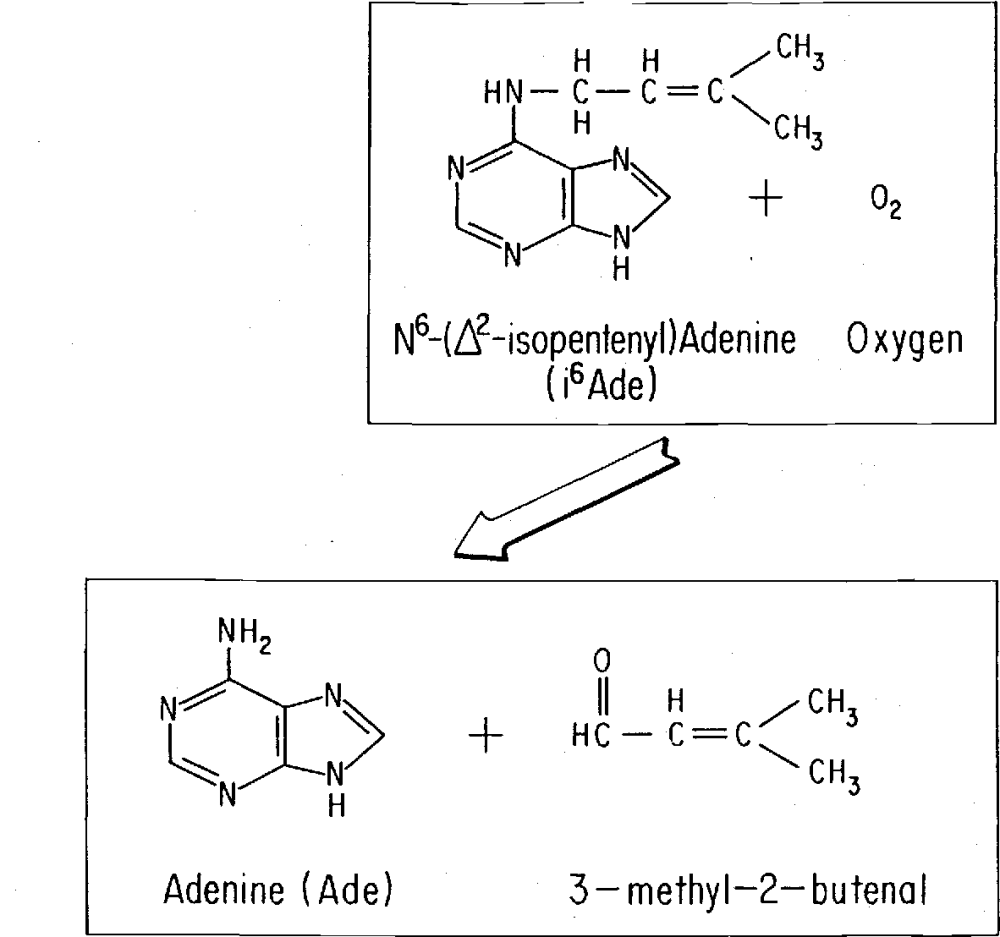 medium resolution of figure 1