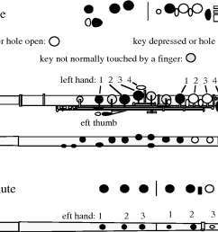 flute wire diagram wiring diagram flute diagram labeled flute termsedit [ 1348 x 844 Pixel ]