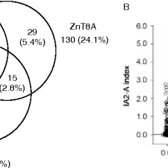 Venn Diagram Type 1 And 2 Diabetes Gm Alternator Wiring External Regulator Figure From The Diagnostic Value Of Zinc Transporter 8 Association Autoantibody Znt8a With Glutamic Acid