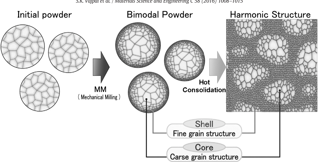 Figure 1 from Effect of bimodal harmonic structure design