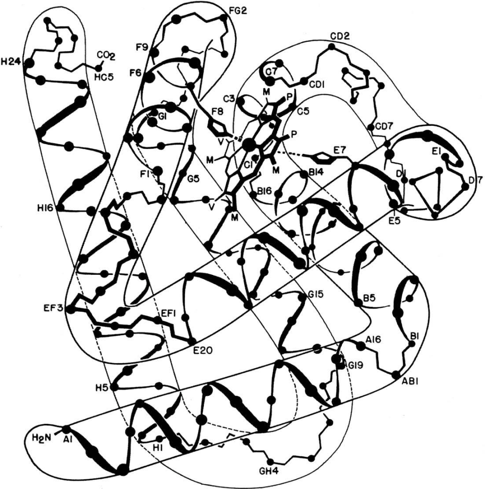 medium resolution of an accurate but simplified diagram of the folding of helices