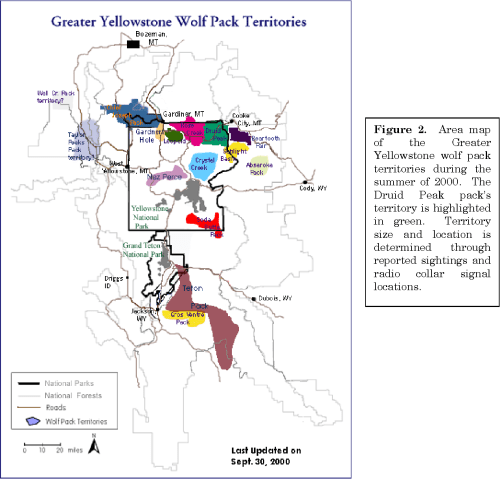 small resolution of wild and captive wolf canis lupus aggression in relation to pack size and territory availability semantic scholar