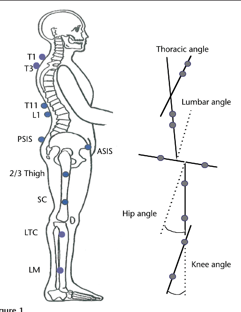 Figure 1 from Kinematics of rising from a chair: image