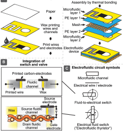 figure 2 design and fabrication of printed electrofluidic devices a schematic diagram of [ 862 x 984 Pixel ]