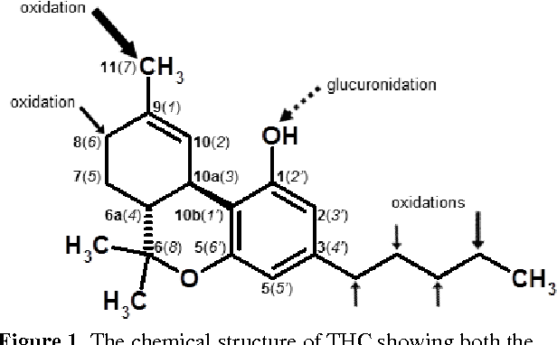 Figure 1 from Mini-Review 11-Nor-9-carboxy-∆ 9