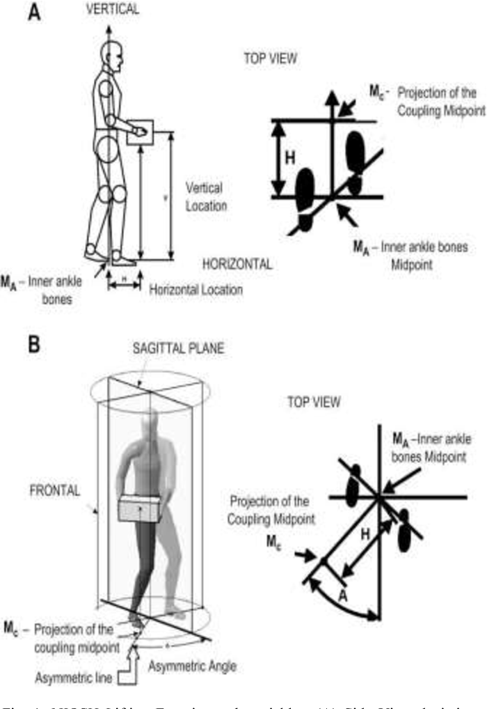 Figure 1 from A review on NIOSH lifting equation