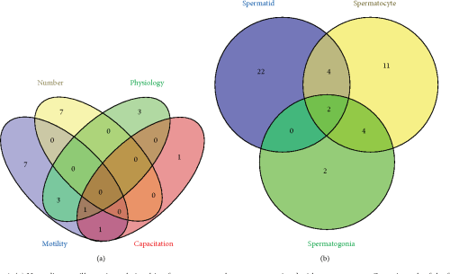 small resolution of figure 4 a venn diagram illustrating relationship of genes among phenotypes associated with