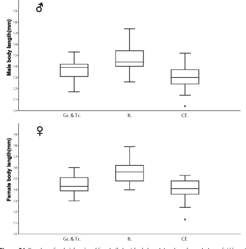 small resolution of boxplots of male above and female below body length