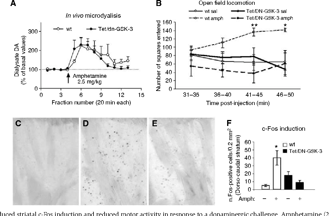 hight resolution of figure 5 reduced striatal c fos induction and reduced motor activity in response to a