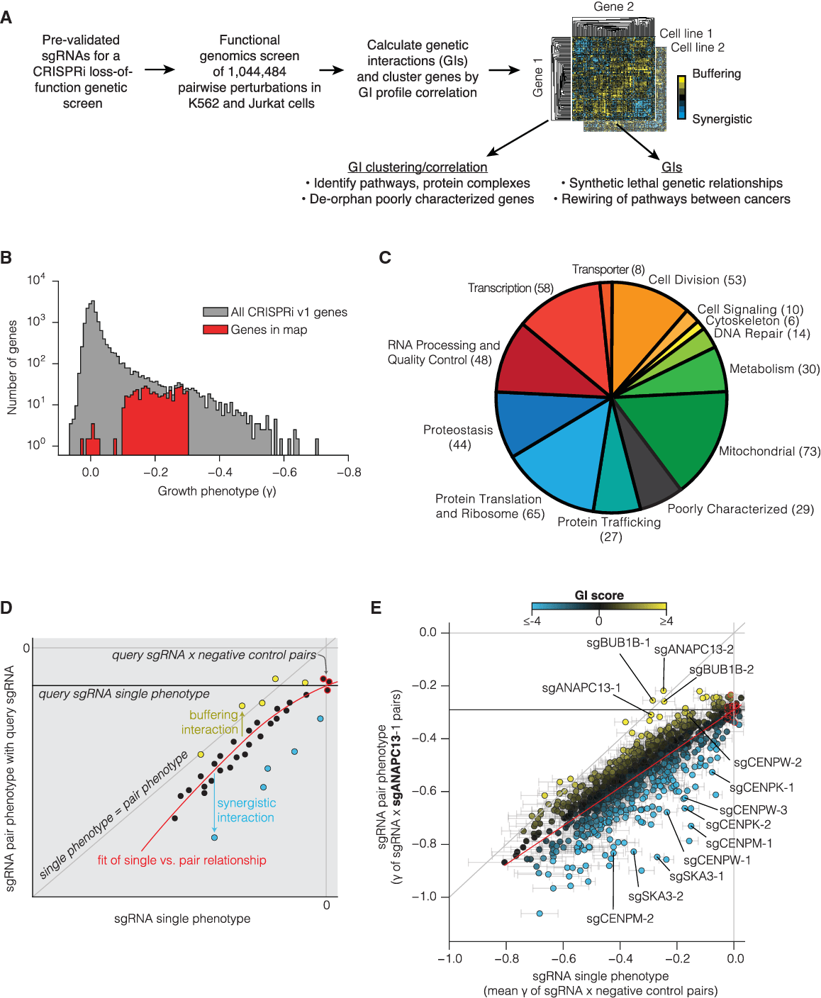 hight resolution of a large scale quantitative gi mapping platform in human cells