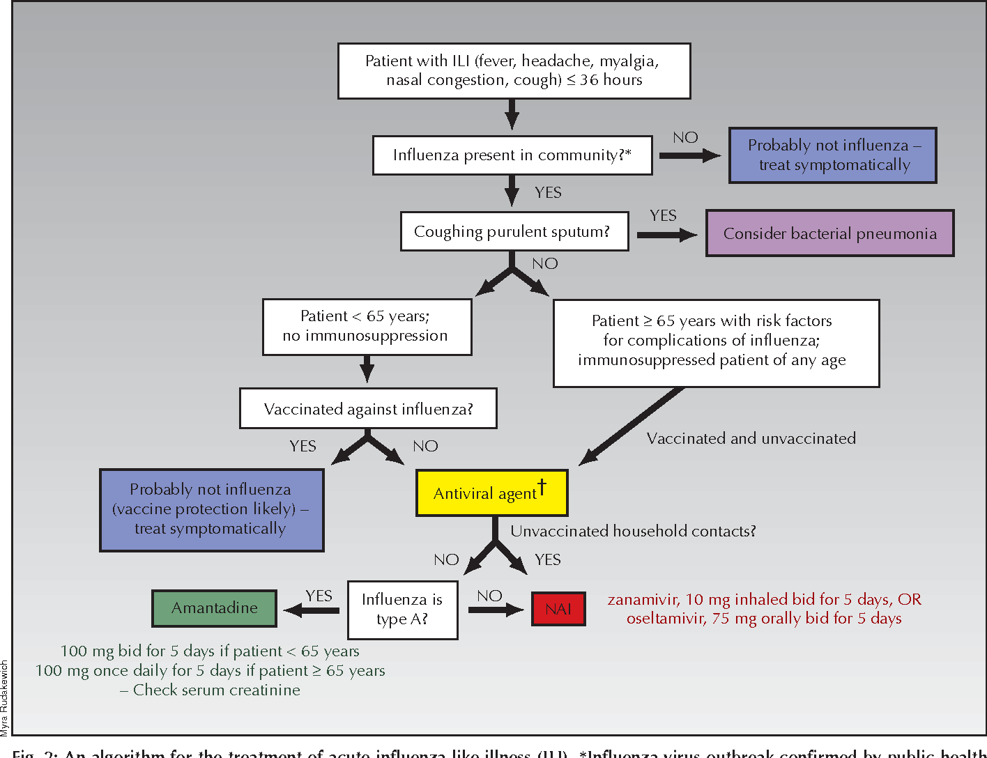 Figure 2 from The treatment of influenza with antiviral ...