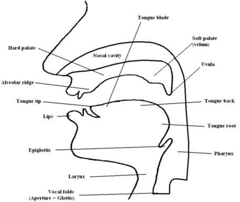 Figure 5 from RESEARCH ON SPOKEN LANGUAGE PROCESSING