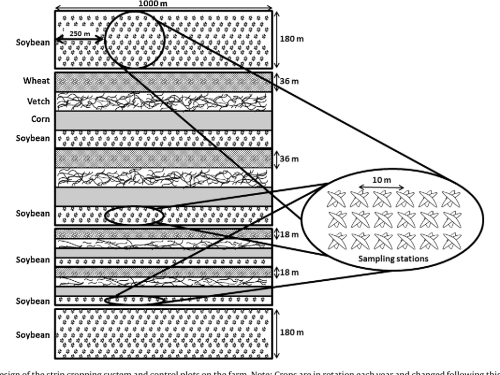 small resolution of experimental design of the strip cropping system and control plots on the