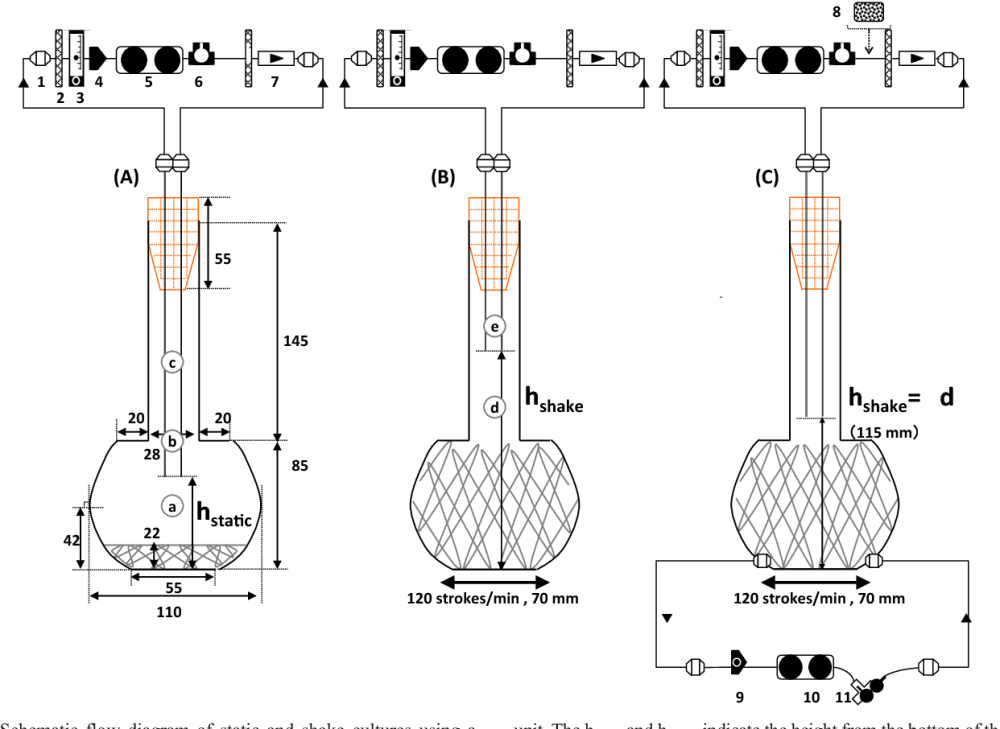 medium resolution of 1 schematic flow diagram of static and shake cultures using a sakaguchi flask with