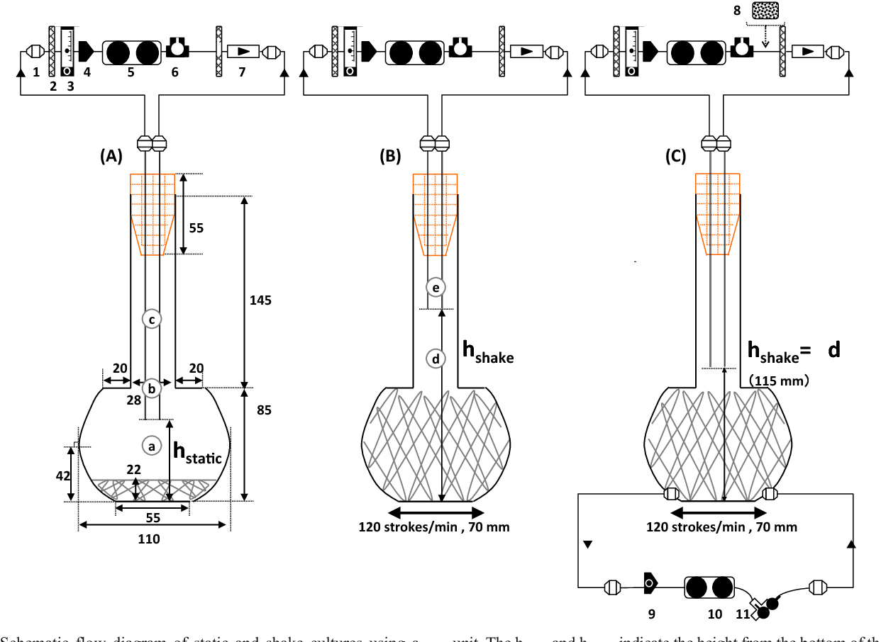 hight resolution of 1 schematic flow diagram of static and shake cultures using a sakaguchi flask with