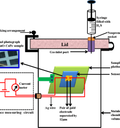 figure 3 schematic of the gas sensing set up and electrical measurement unit the [ 1178 x 1004 Pixel ]