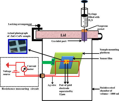 small resolution of figure 3 schematic of the gas sensing set up and electrical measurement unit the