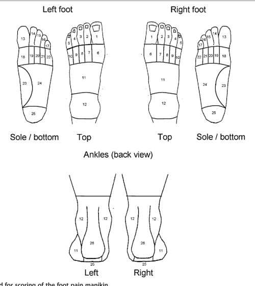 small resolution of figure 2 the areas used for scoring of the foot pain manikin