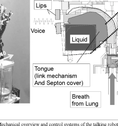 three dimensional tongue with liquid sealing mechanism for improving resonance on an anthropomorphic talking robot semantic scholar [ 1282 x 718 Pixel ]