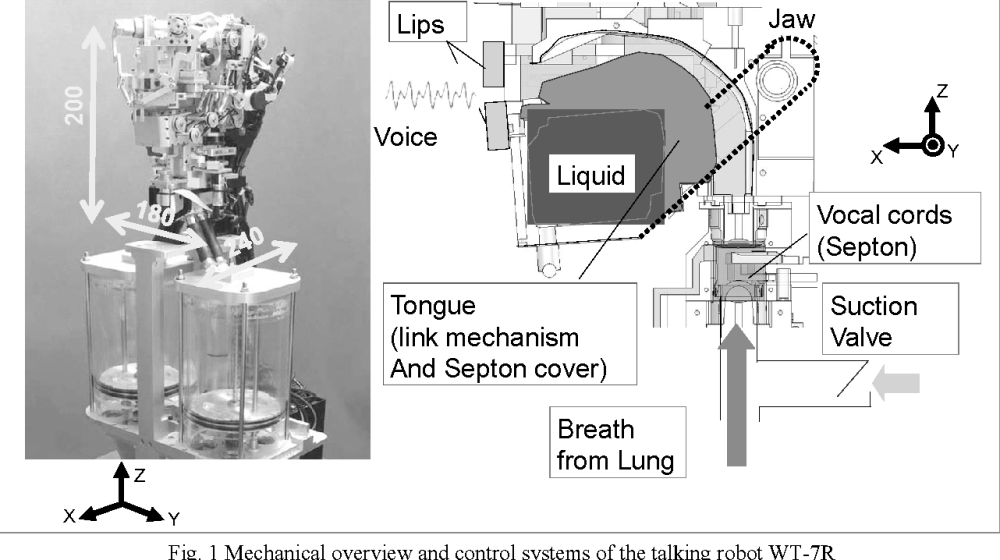 medium resolution of three dimensional tongue with liquid sealing mechanism for improving resonance on an anthropomorphic talking robot semantic scholar