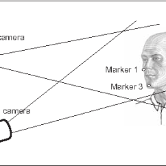Human Mandible Diagram Suzuki Trs Wiring Figure 2 From Three Dimensional Model Of The Fig Elite Measuring System With Subject And Two Infrared Cameras