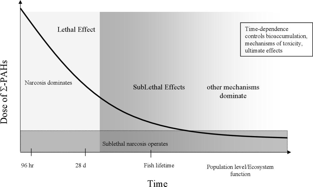 medium resolution of figure 2 1