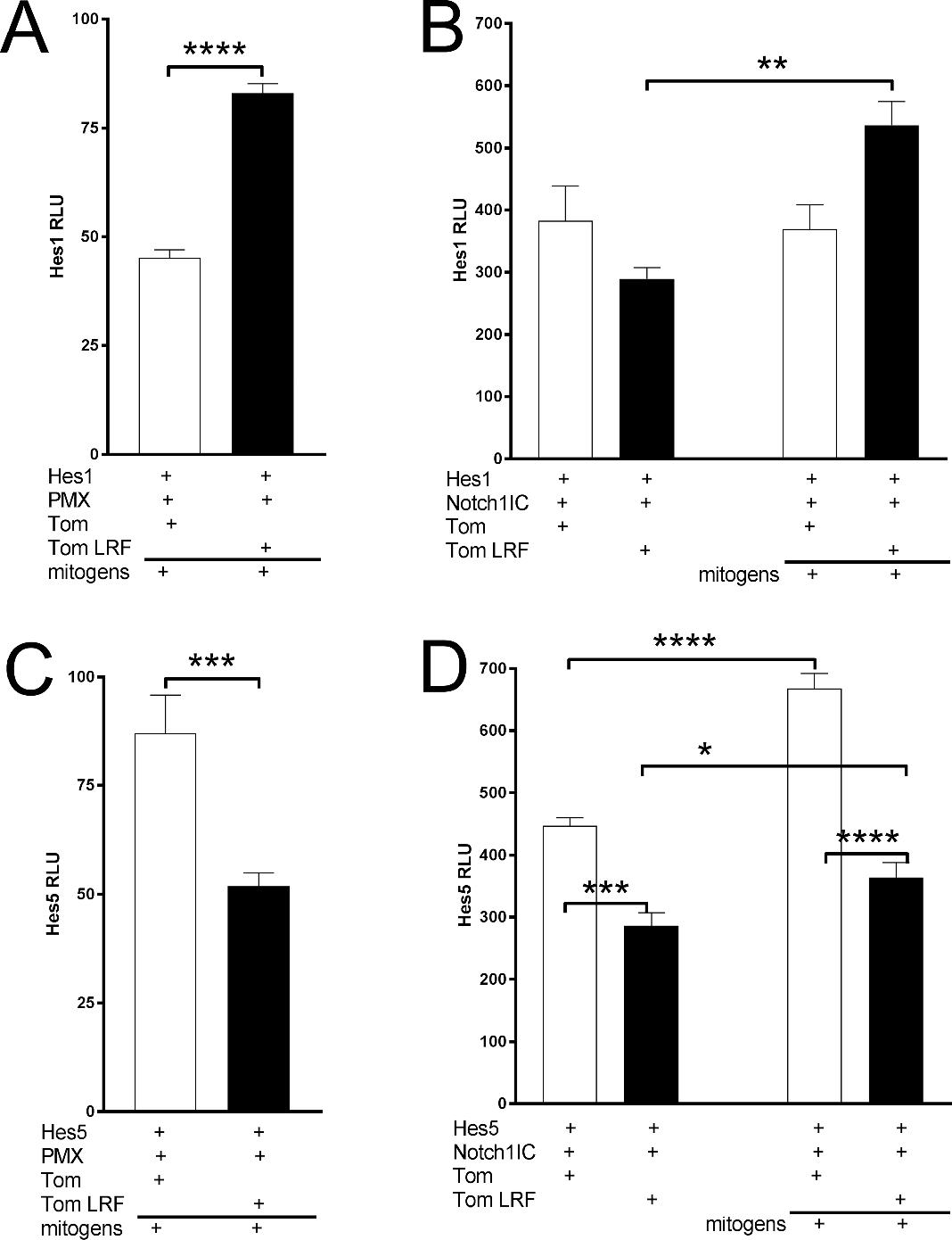 hight resolution of figure 8 lrf transcriptional regulation of notch target genes transcriptional activity was measured from transient